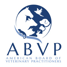 Dr. Elizabeth O'Brien at The Cat Clinic is a Diplomate of the American Board of Veterinary Practiioners (ABVP).