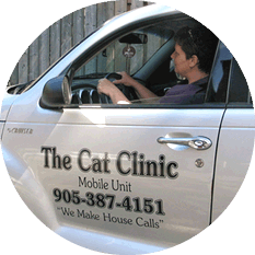 The Cat Clinic mobile veterinary services PT Cruiser