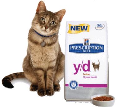 Cat standing beside bag of Hills Prescription Diet feline food